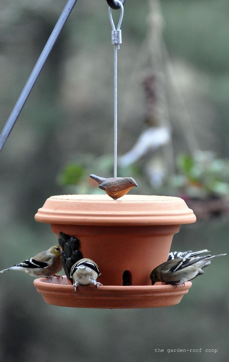 the garden roof coop diy flowerpot bird feeder. Black Bedroom Furniture Sets. Home Design Ideas