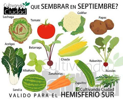Que sembrar en septiembre (Hemisferio Sur)