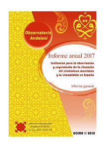 Informe anual de 2017