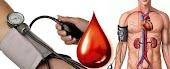 Mengawal Tekanan Darah Tinggi dengan menggunankan HERBA