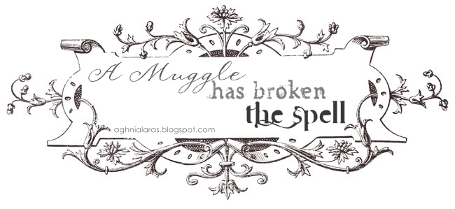 A Muggle Has Broken The Spell