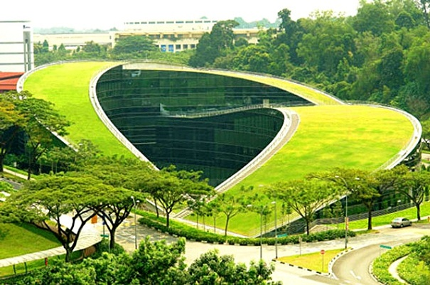 Telhado Verde - Prédio em harmonia com a paisagem