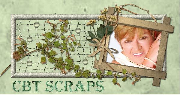 CBT SCRAPS