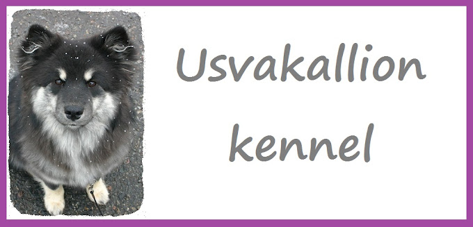 Usvakallion kennel