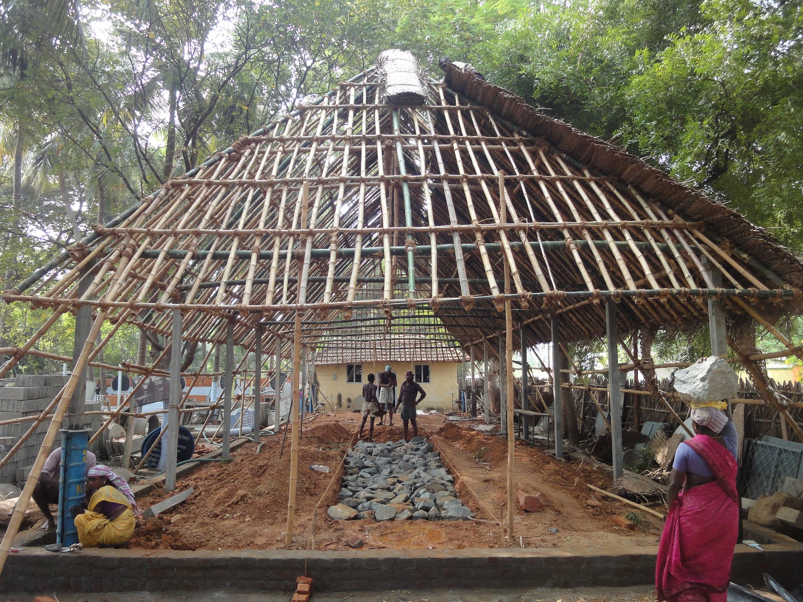 Ngo News Blog Newsline Bamboo Roofing Rafters In Cow