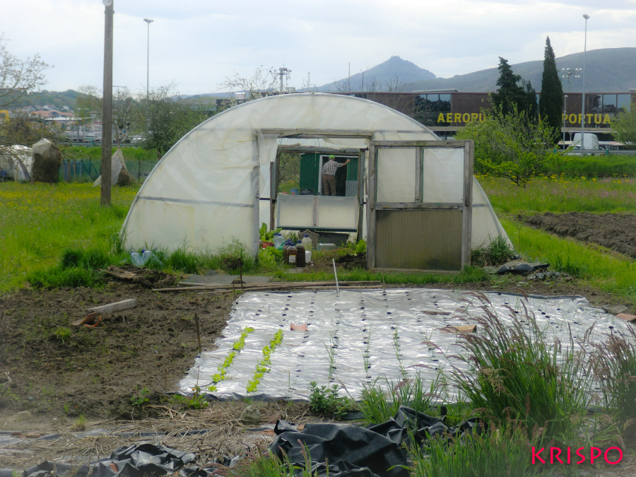 invernadero en una huerta de hondarribia