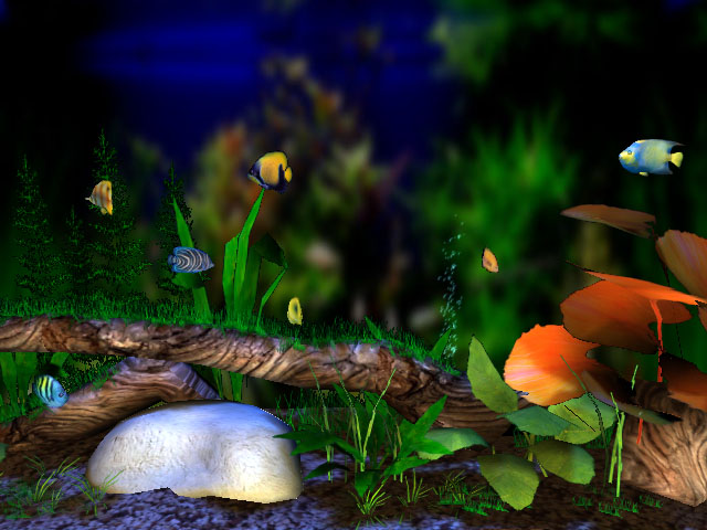 3d Fish Screensaver3