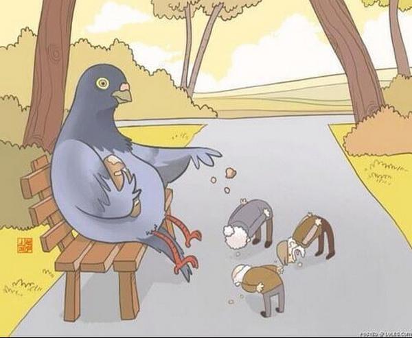 Animais a comportarem-se como os humanos