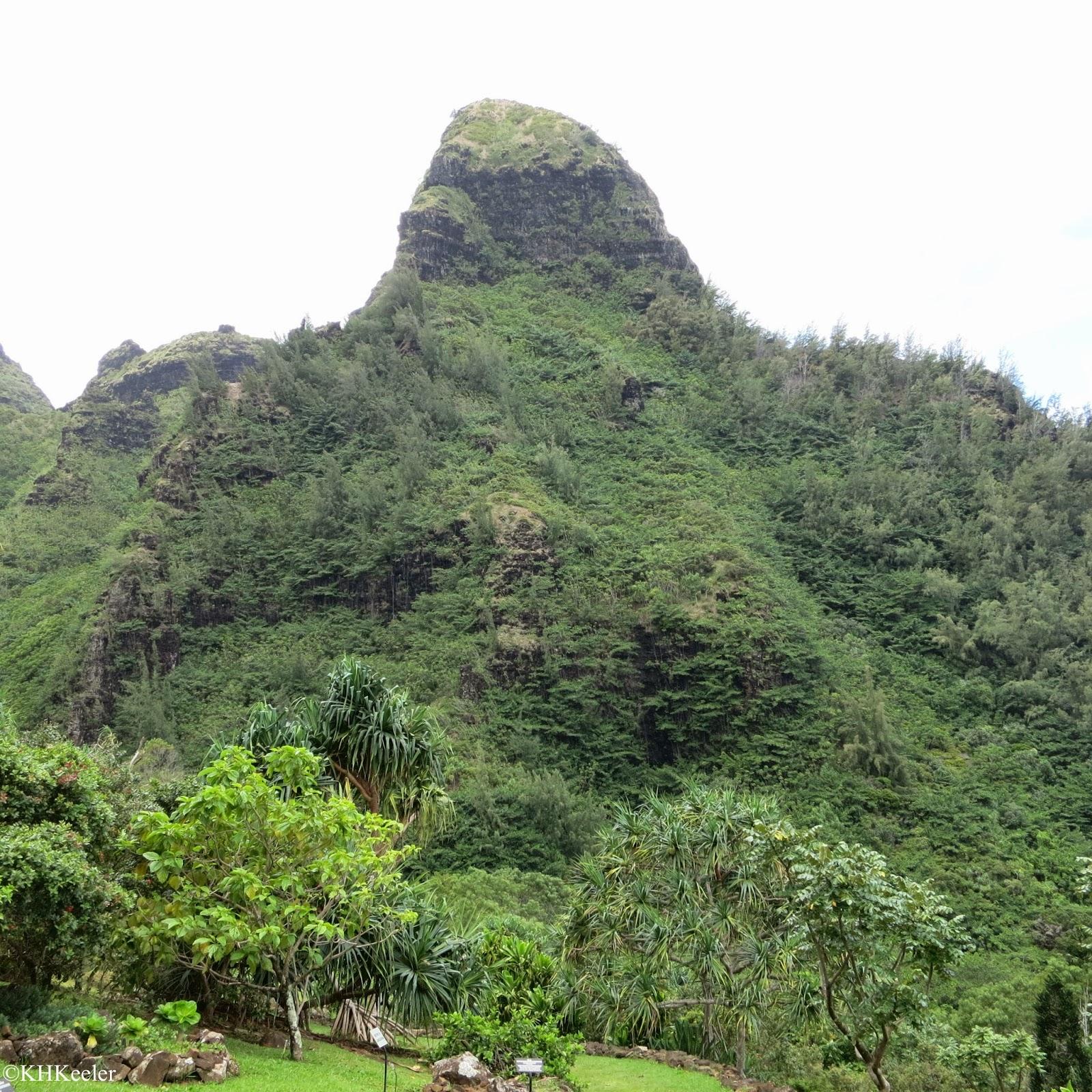 Kauai hillside