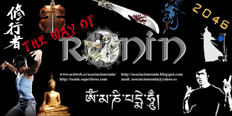 THE WAY OF RONIN