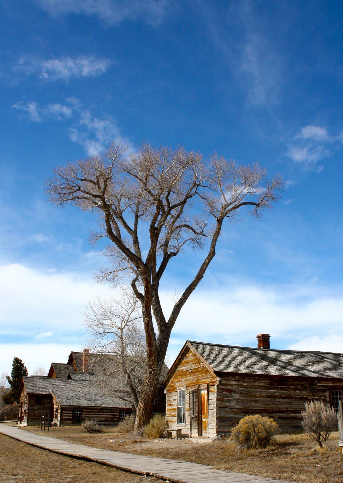 Bannack Montana Ghost Town | Phillip\'s Natural World 1.0.2