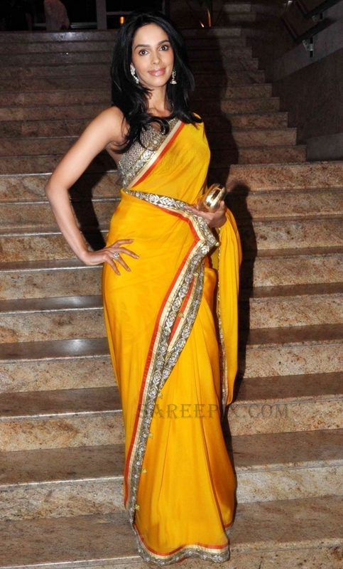 Mallika sherawat in saree at Jai Maharashtra channel launch