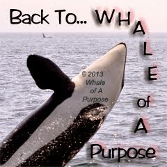 Link back to Whale of Purpose