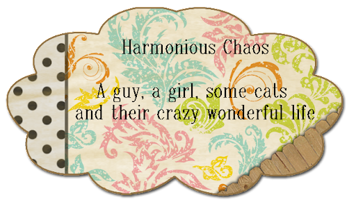 Harmonious Chaos