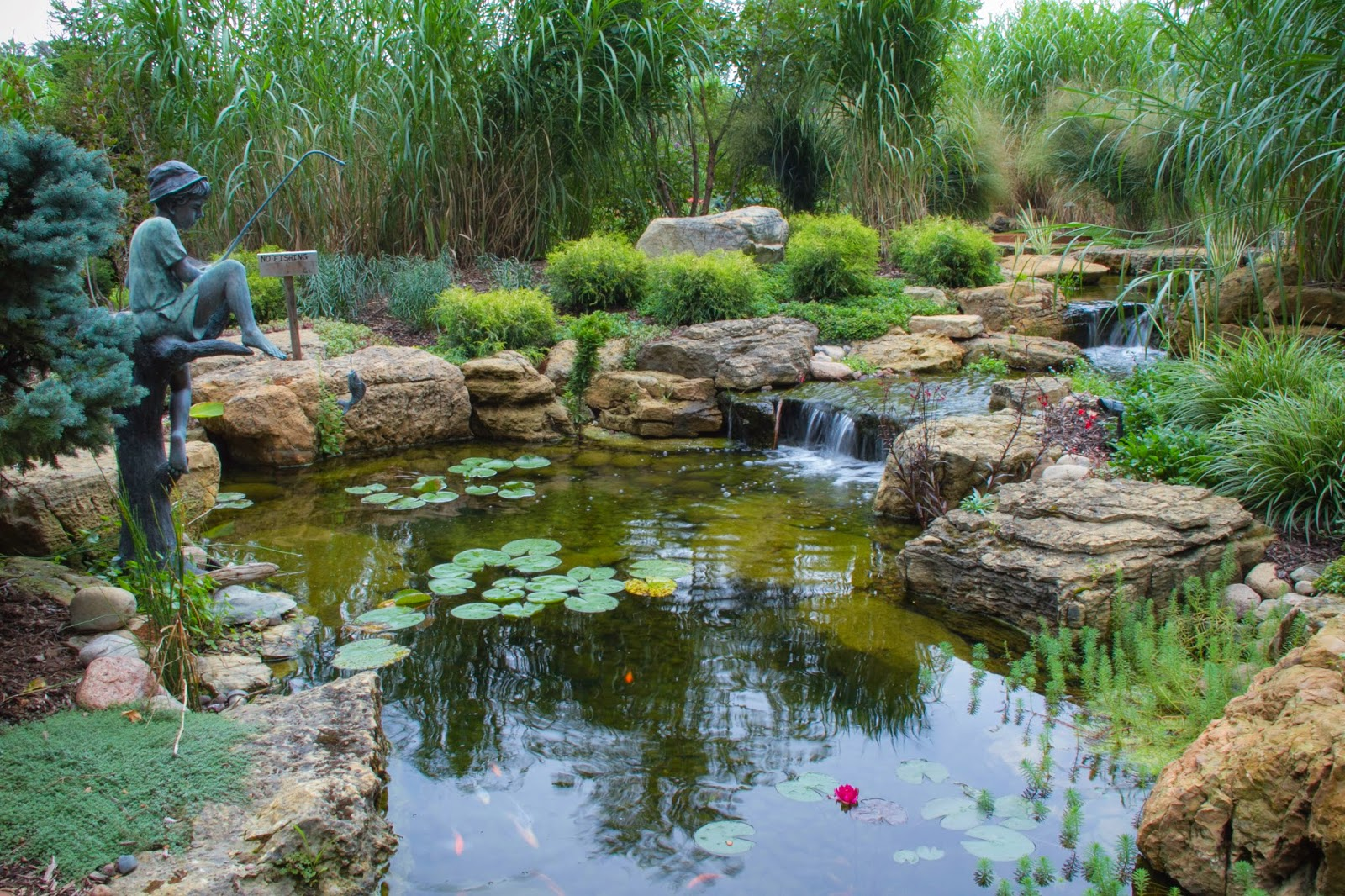 How a Chicago Suburbanite Transformed their Backyard with Water