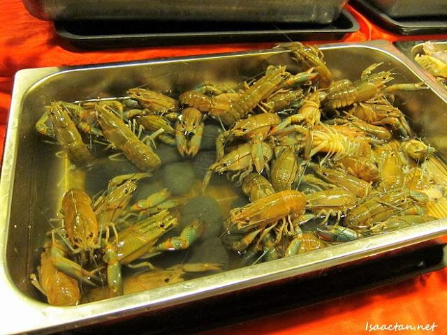 Nagomi Japanese Restaurant Shabu-Shabu Buffet