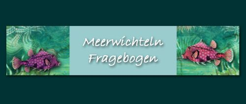 Mein Fragebogen