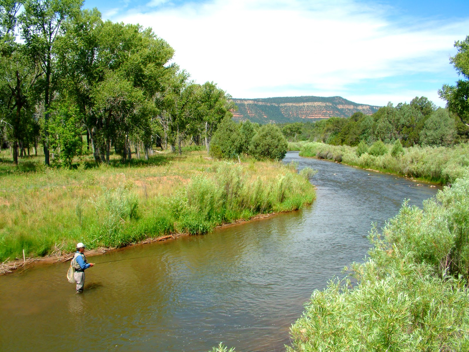 outdoors nm spring fishing a best bet as nm heads into