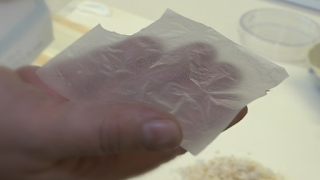 Biovotec Treat Chronic Wounds WIth Product Made From Eggshells