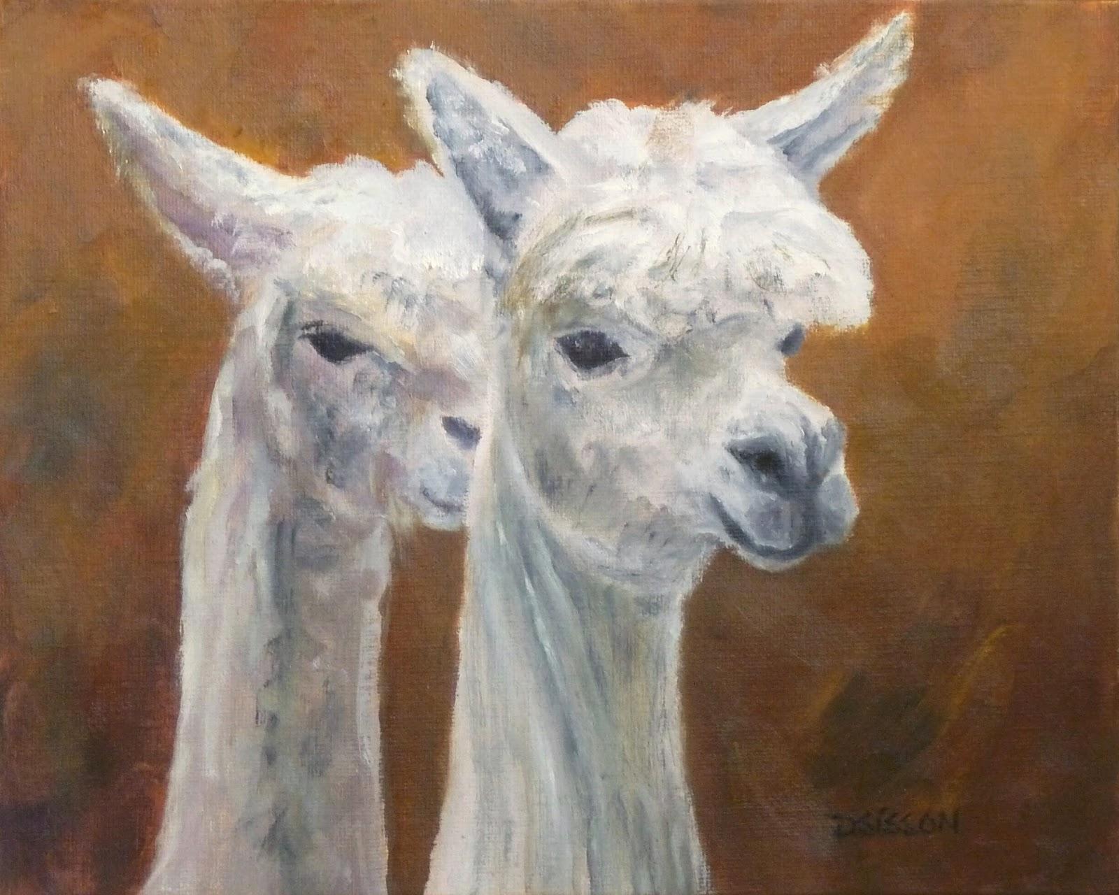 Oil Painting Alpaca