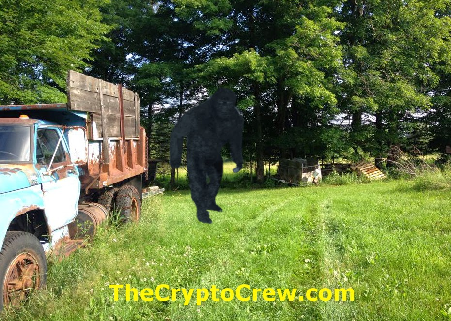 Bigfoot in New Hampshire