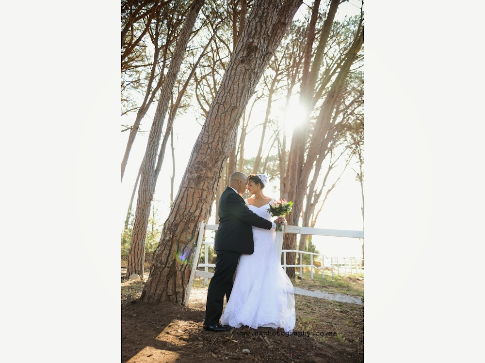 DK Photography Slideshow-458 Lawrencia & Warren's Wedding in Forest 44, Stellenbosch  Cape Town Wedding photographer