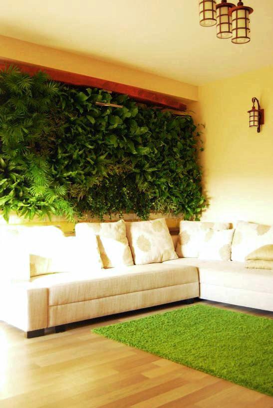 Jardines verticales muros verdes paredes vegetales - Enredaderas de interior ...