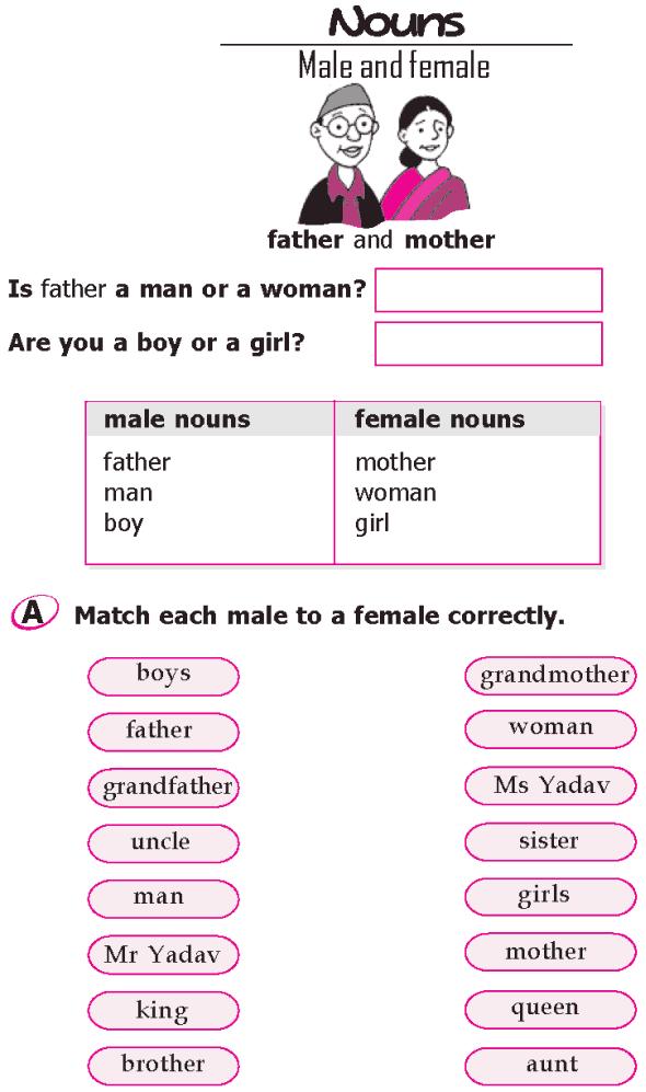 Grade 1 english grammar nouns