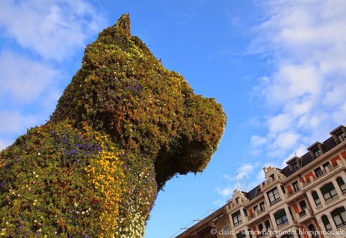 giant puppy garden by Jeff Koons - Bilbao, Spain
