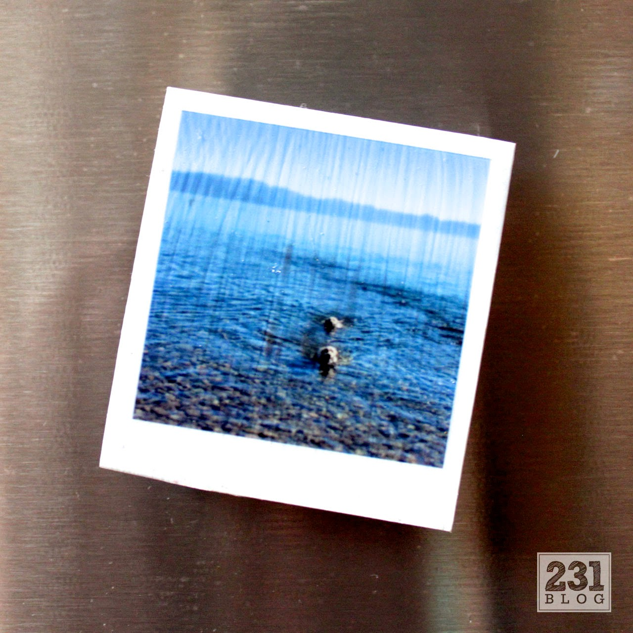 DIY magnets from Instagram photos