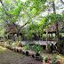 Mengajak Anak Belajar Tentang Alam di Kampung 99 Pepohonan