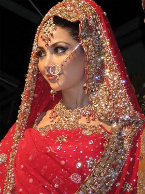 india wedding dresses   Wedding Party Ideas   Make Your Wedding to ...