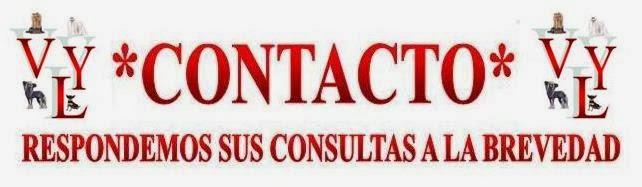 ♣ CONTACTO ♣