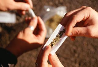 O número de americanos que fumam maconha está em ascensão, enquanto a popularidade de algumas outras drogas ilícitas está estagnada ou em declínio.