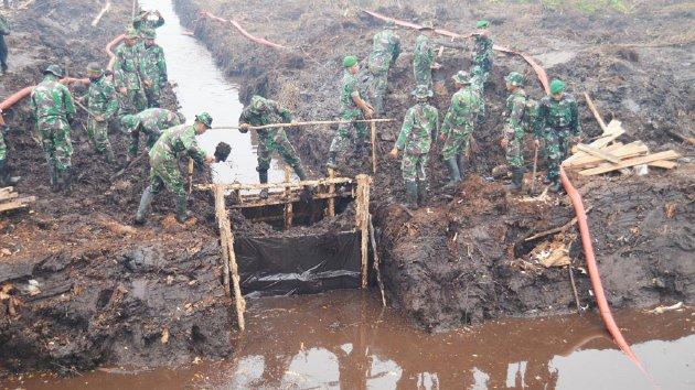 Upaya Prajurit TNI Terus Bangun Kanal untuk Tanggulangi Kebakaran Hutan