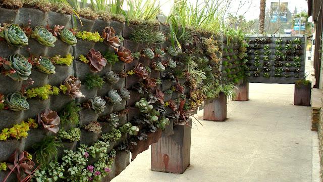 jardim vertical no muro:Restaurante tem muro com jardim vertical [fotos] – Ideias Green