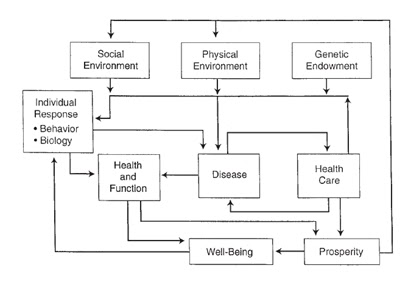 Health Belief Model Obesitas