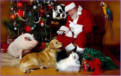 Santa Claus con perros