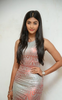 Pooja+Hegde+at+OLK+Success+Meet+Pictures3.jpg