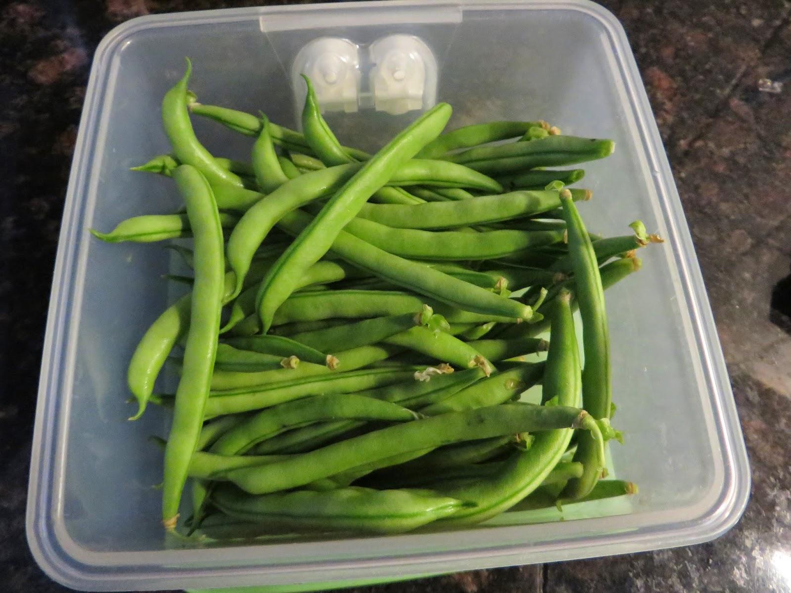 Anita 39 s potjes en pannen groenten uit de tuin en vakantie for Groenten tuin
