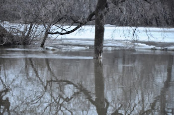Potential for Flood in 2011