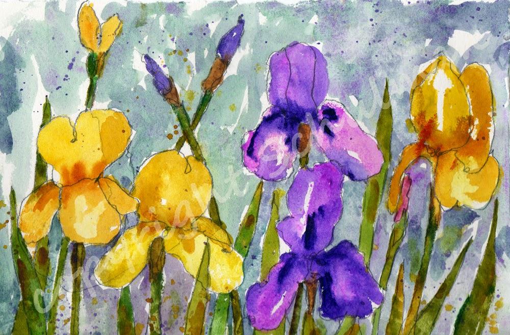 floral watercolor of purple irises by #schulmanArt https://www.etsy.com/listing/121477448/original-floral-watercolor-art-iris