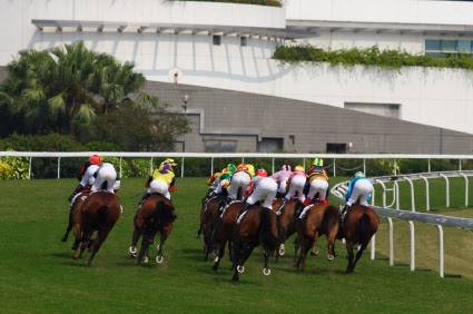 pros and cons of horse racing Like any investment, there are pros and cons to investing by yourself or with others and thoroughbred horse racing is no different should you buy a race horse on your own or in a racing syndicate phone: +818-383-7000 info@littleredfeathercom.
