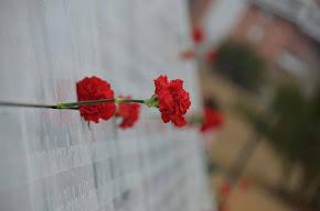 Ofrenda Floral a los caídos/as por la República por el Día de los Difuntos