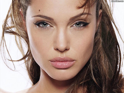 angelina jolie celebridades hollywood