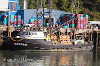 Shannon Hager Photography, Newport Oregon, Fishing Boats