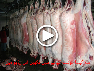 Rats found in mutton at pakistan