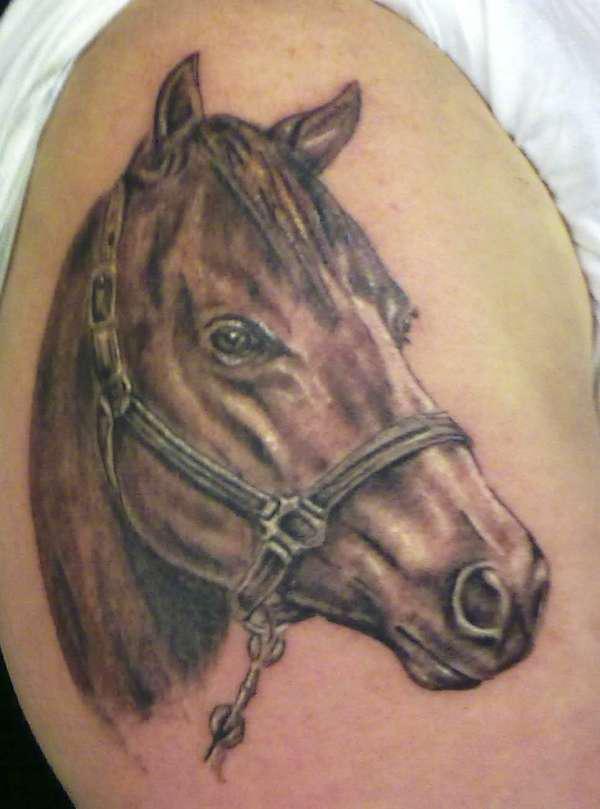 horse tattooteulugar. Black Bedroom Furniture Sets. Home Design Ideas