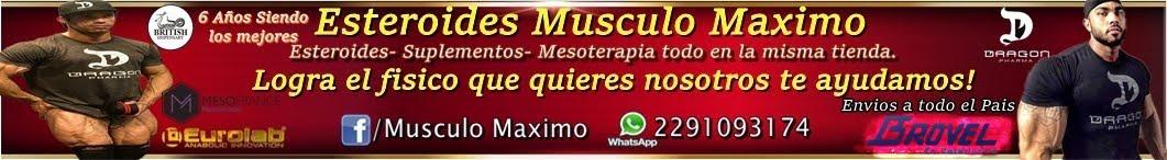 Esteroides Musculo