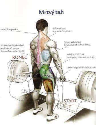 Bodybuilding weight training Exercises step by step instructions 2